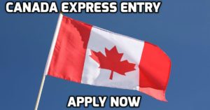 express entry lawyer